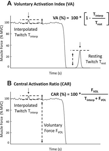 Is The Notion Of Central Fatigue Based On A Solid Foundation Journal Of Neurophysiology