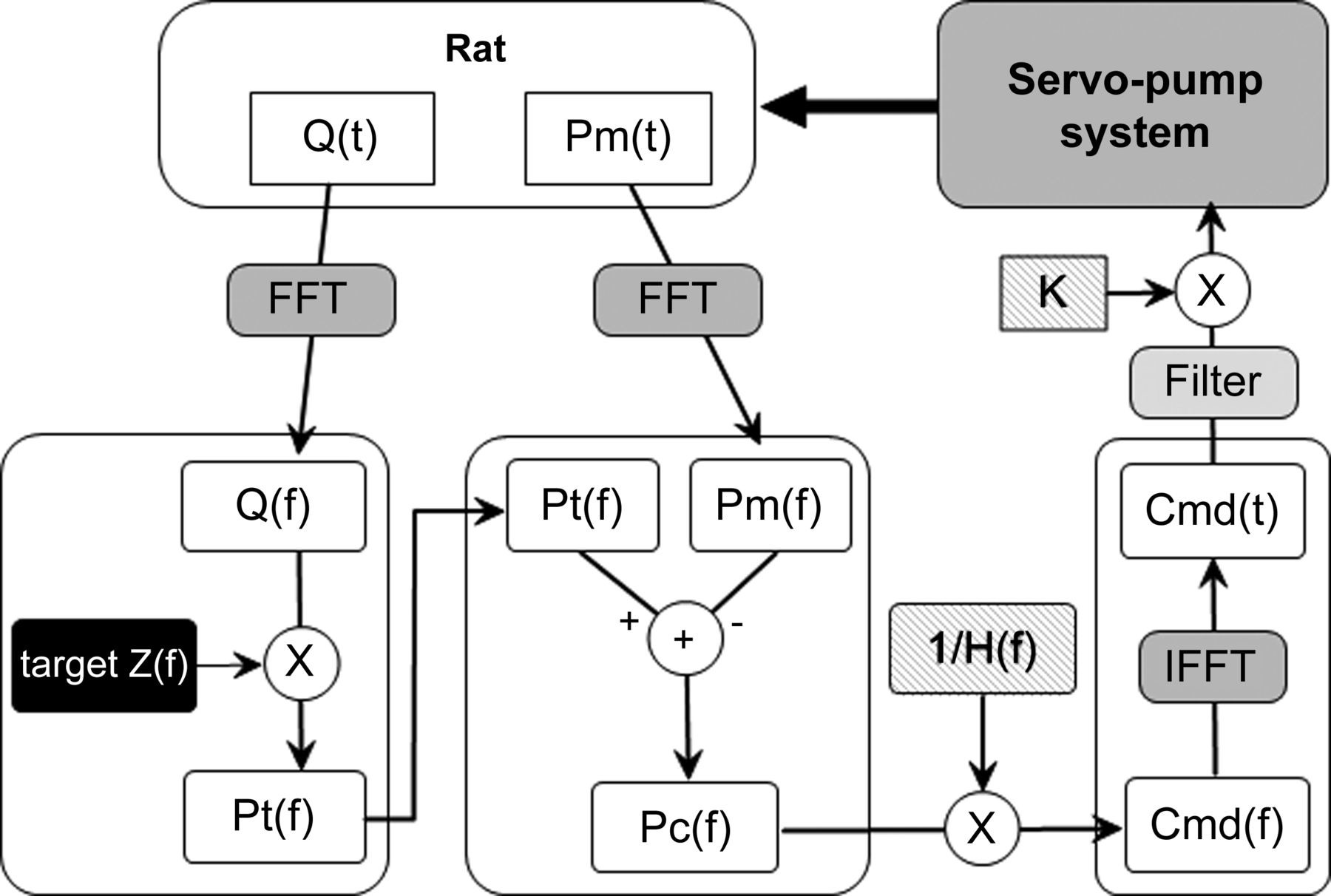 development of a servo pump system for in vivo loading of pathological pulmonary artery