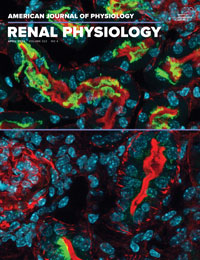American Journal of Physiology-Renal Physiology 0 0 cover image